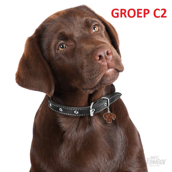 groepc2